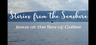 Stories From the Seashore